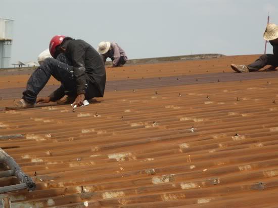 Công ty chống dột mái tôn giá rẻ tại TPHCM