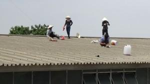 Thợ chống dột mái tôn tại quận 11