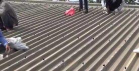 Cách chống dột mái tôn đơn giản